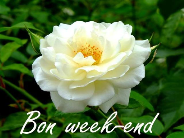 auguri buon week end