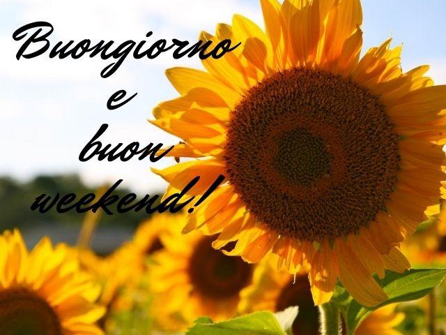 felice week end