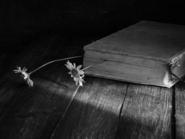 foto poesie sul passato