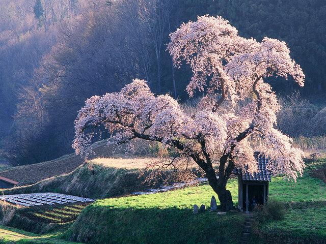 frasi sulla bellezza dei luoghi