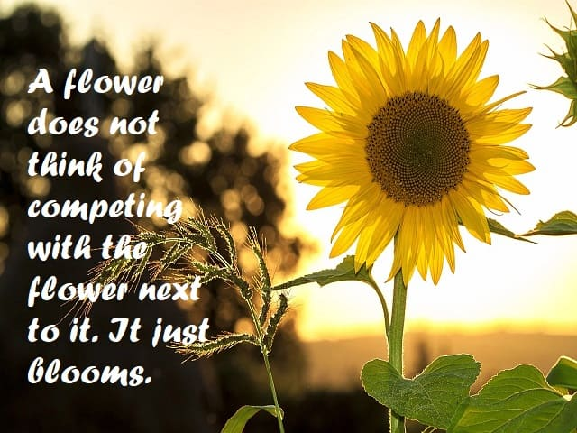 frasi sui fiori in inglese
