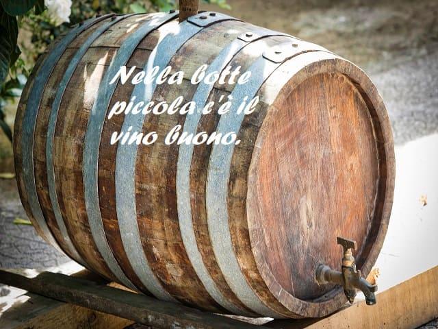 donne e vino frasi