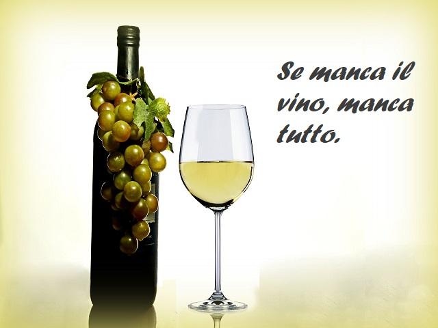 frasi sul vino bianco